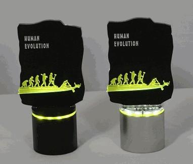 Drachenbootshop Pokal HUMAN EVOLUTION BELEUCHTET